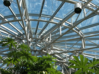 Steel Project Case Study Gallery Cockrell Butterfly